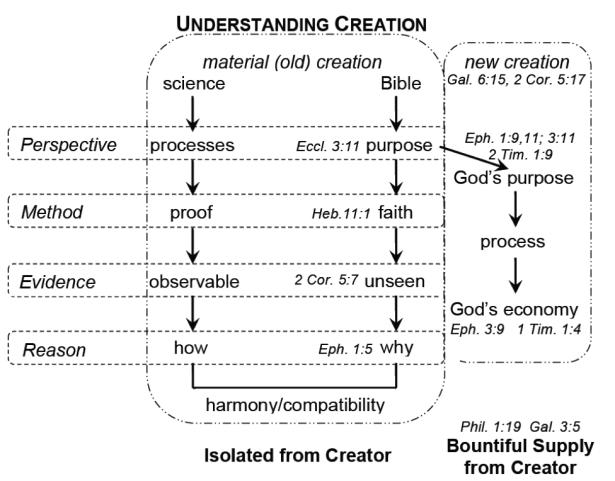 Diller Diagram